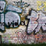 Vandalismus besser verstehen
