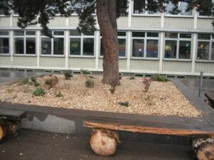 Hans-Prinzhorn-Realschule