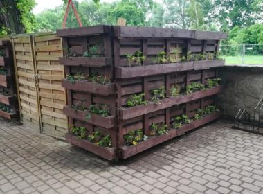 Urban Gardening Header