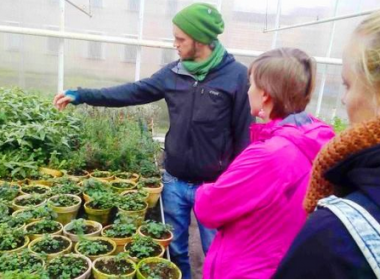 Junge Menschen schauen sich Pflanzen an