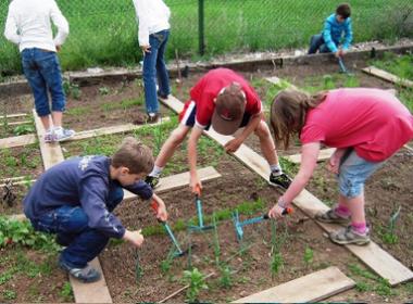 schüler beim Gärtnern